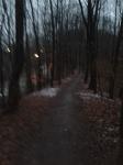 Westpark-Lauf