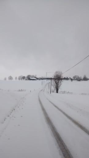 Zwiesel-Lauf von zuHause