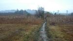 Rothenrainer Moor