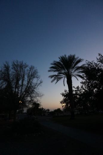 Abend in Lotan